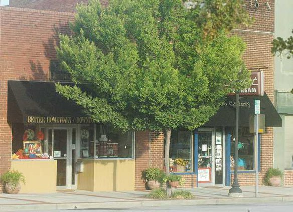 Web Sylvania Downtown