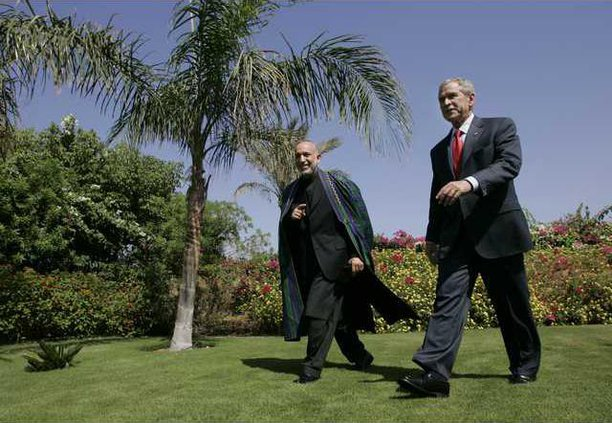 Egypt Bush US Midea 6556147