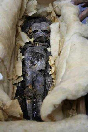 Egypt King Tut s Fe 5228436