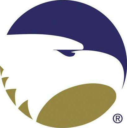 GSU logo W