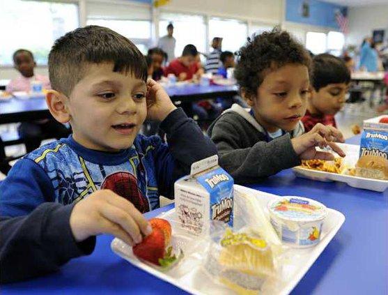 Healthier School Lunc Heal