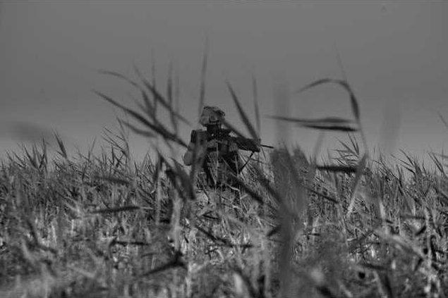 Marines in Afghanis 8212483