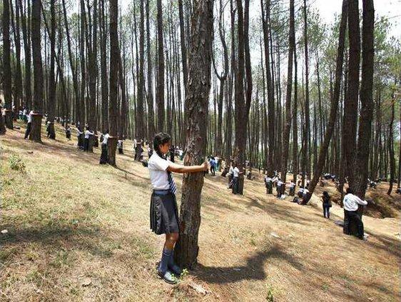 Nepal Tree Hugging Re Heal