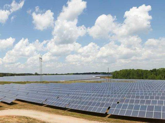 Solar Farm Web