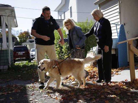 W Hero Guide Dog Heal