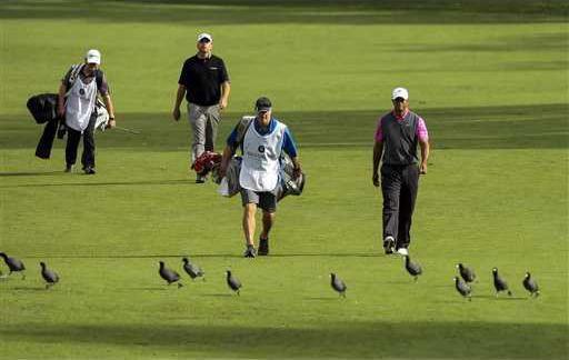 World Challenge Golf Heal