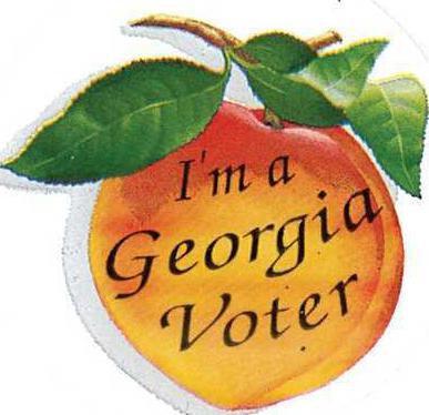 voter sticker