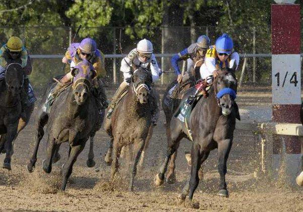 Arkansas Derby Horse  Heal