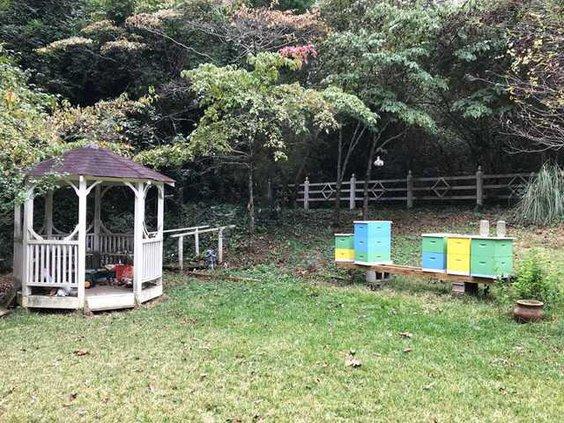 Backyard Van Ottering