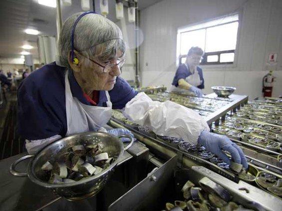 So Long Sardines Heal