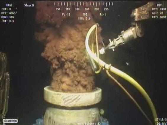 Gulf Oil Spill Heal16
