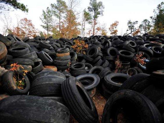 Illegal Tire Dump W