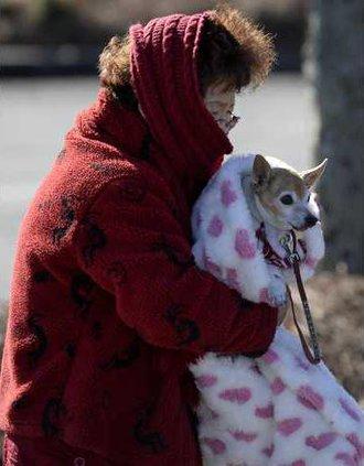 Deep Freeze Pets Werm