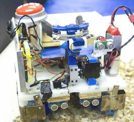 Moon robot for web