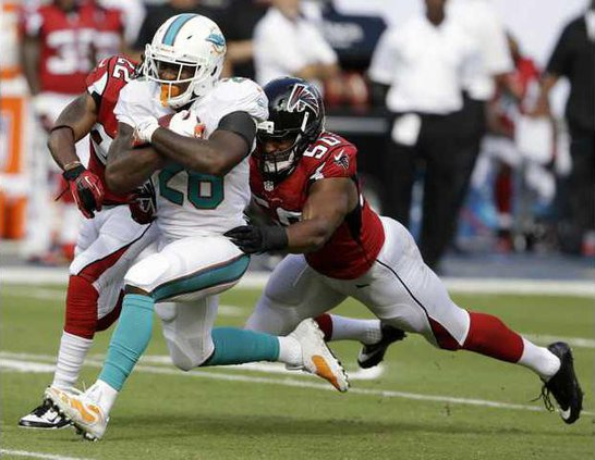 Falcons Dolphins Foot Werm