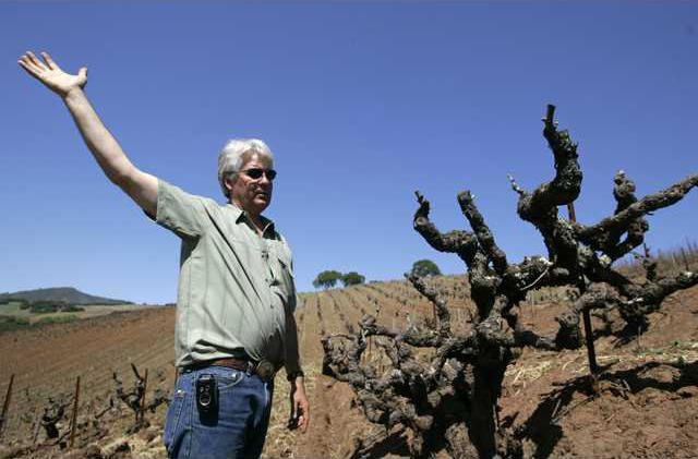 Dry Farmed Wine FX1 5125417