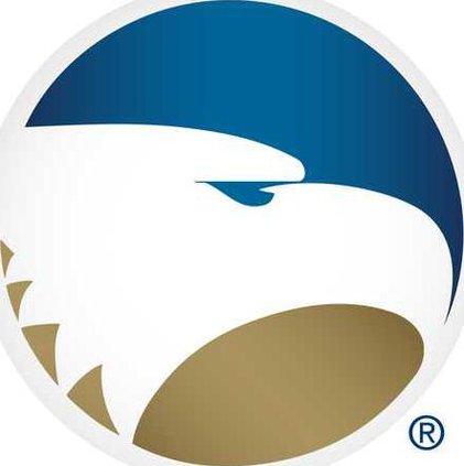 GSU.3D EagleHead