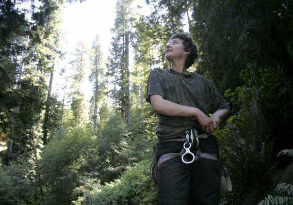 Tree Sitters Triump 5934746