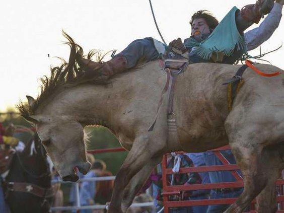 W Kiwanis rodeo file