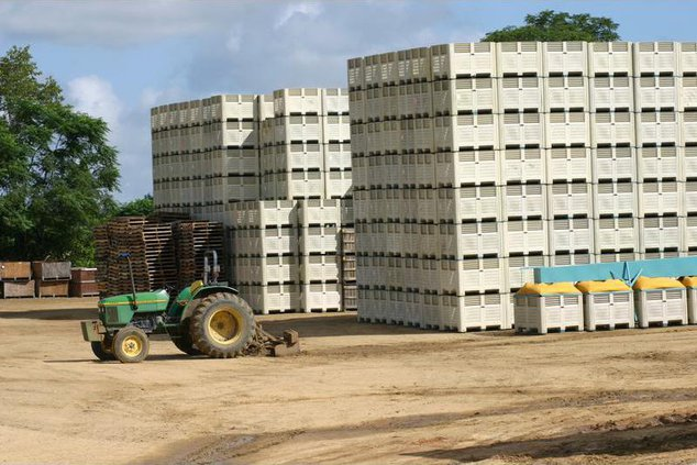 Tractoronion containers