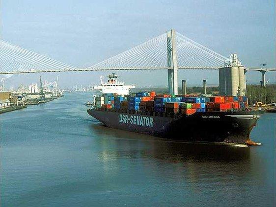 Web Savannah river