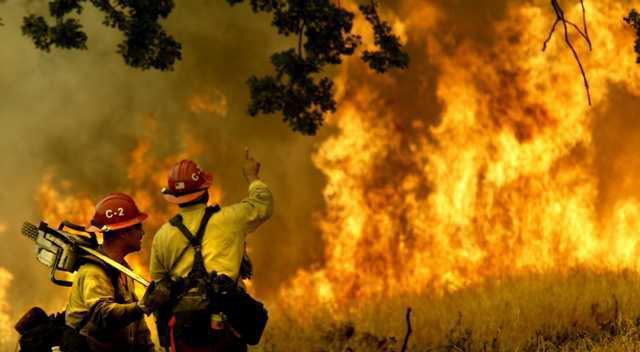 Wildfires CAMON103 5216655