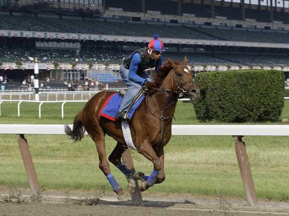 W Belmont Stakes Horse  Heal