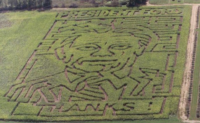 Ford Corn Maze WXS1 5095402
