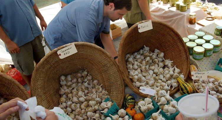 Hudson-Valley-Garlic-Festival-_-Saugertires.jpg