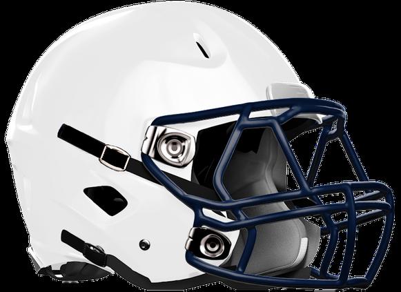 Portal helmet new
