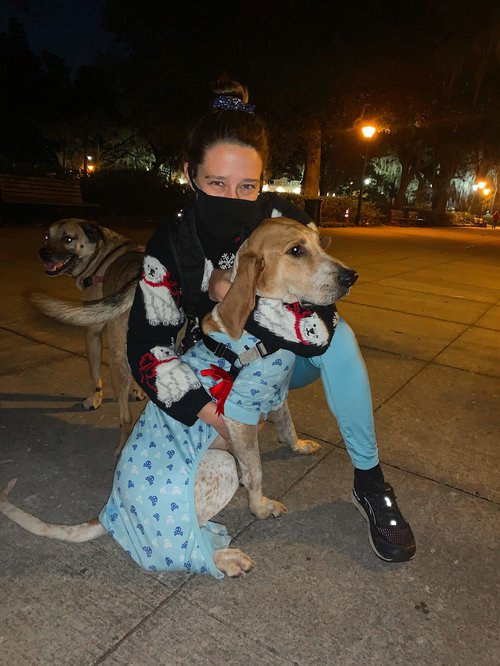 Participants dressed up in holiday style for Savannah's Dec. 18 Pack Walk event held by Renegade Paws Rescue.