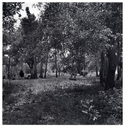 Carrie Mae Weems (American, b. 1953). Box spring in tree, 1992, gelatin silver print. Courtesy Jack Shainman Gallery