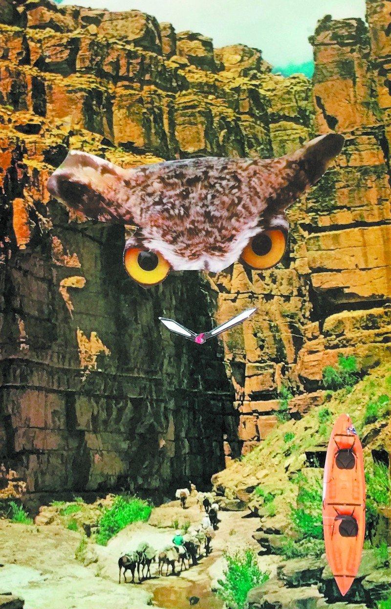 'The Owl Clock'