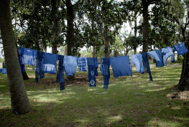 Fifty shades of blue: The dye from Ossabaw Island's heritage indigo plants yields a 'bright and vibrant' shade that's different from other types.