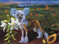 art_review_51--breed_bartone.jpg