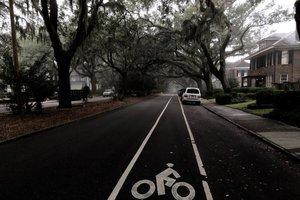 news_cycle--bike-lane.jpg