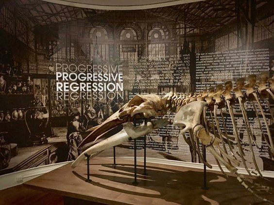 progressiveregression1web.jpg