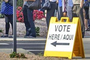 voting_line.jpg