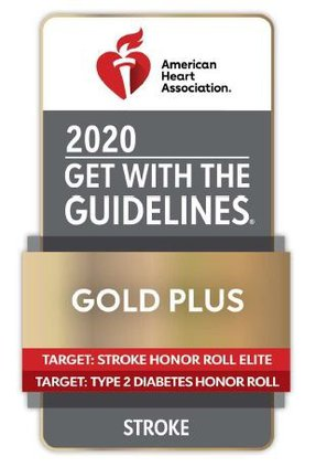 get_with_the_guidelines_2020_stroke_icon.jpg