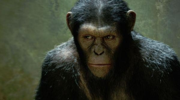 rise-of-the-planet-of-the-apes_still11.jpg