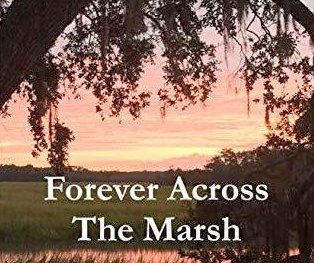 forever_across_a_marsh.jpg