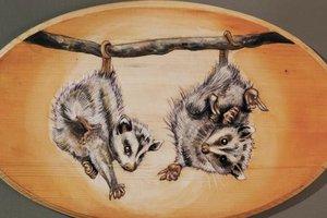 art-patrol-possums.jpg