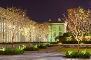 scad-exterior-with-trees.jpg