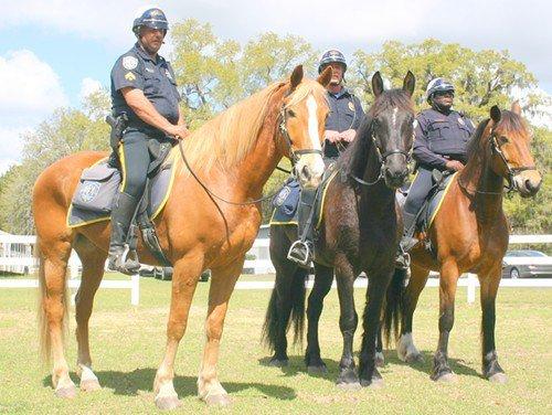 1366230895-mounted_patrol_new_horses_2.jpg
