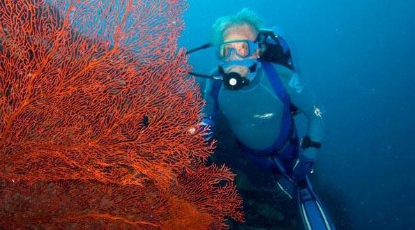 films-cousteau2.jpg