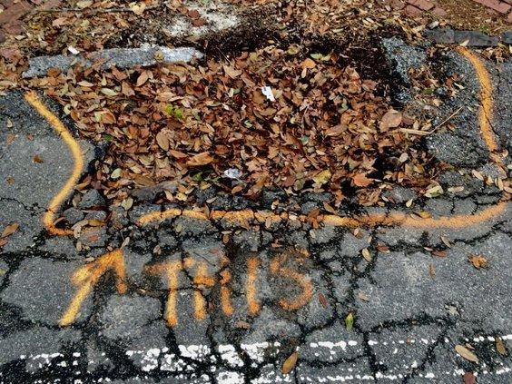 news_cycle-pothole_-_1.jpg