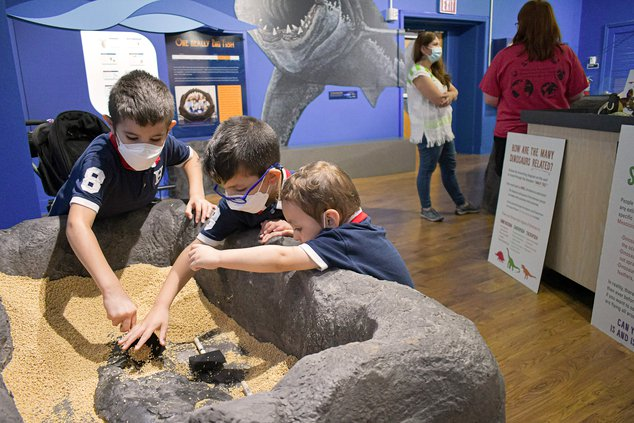 Diego Hibbs, 5, left, leads an archeological dig with brothers Victor, 4, center, and Santi, 2, while mom Maria chats with Georgia Southern geoogy major Lauren Vieth, background, on National Fossil Day at the newly re-opened Georgia Southern Museum on Wed